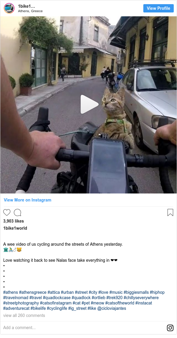 Instagram post by 1bike1world: ⠀⠀⠀⠀⠀⠀⠀⠀⠀ A wee video of us cycling around the streets of Athens yesterday. 🏛🚴♂️🐱⠀⠀⠀⠀⠀⠀⠀⠀⠀ ⠀⠀⠀⠀⠀⠀⠀⠀⠀ Love watching it back to see Nalas face take everything in ❤❤ •⠀⠀⠀⠀⠀⠀⠀⠀⠀ •⠀⠀⠀⠀⠀⠀⠀⠀⠀ •⠀⠀⠀⠀⠀⠀⠀⠀⠀ •⠀⠀⠀⠀⠀⠀⠀⠀⠀ •⠀⠀⠀⠀⠀⠀⠀⠀⠀ #athens #athensgreece #attica #urban #street #city #love #music #biggiesmalls #hiphop  #travelnomad #travel #quadlockcase #quadlock #ortlieb #trek920 #chillyseverywhere #streetphotography #catsofinstagram #cat #pet #meow #catsoftheworld #instacat #adventurecat #bikelife #cyclinglife #ig_street #like @cicloviajantes