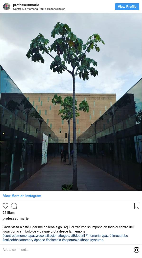 Publicación de Instagram por professeurmarie: Cada visita a este lugar me enseña algo. Aquí el Yarumo se impone en todo el centro del lugar como símbolo de vida que brota desde la memoria. #centrodememoriapazyreconciliacion #bogota #9deabril #memoria #paz #florecerbbc #salidabbc #memory #peace #colombia #esperanza #hope #yarumo
