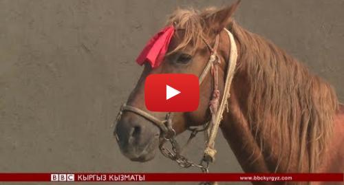 Youtube постту BBC News Кыргыз жазды: Ооганстандагы улак тартышка түшкөн кыргыз аттары - BBC Kyrgyz