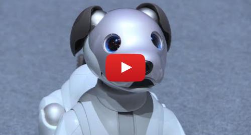 Youtube post by AFP: Sony dévoile la nouvelle version de son chien robot Aibo