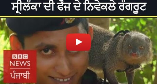 Youtube post by BBC News Punjabi: Meet the latest recruits to the Sri Lankan army | BBC NEWS PUNJABI