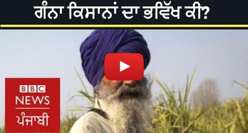 Youtube post by BBC News Punjabi: ਪੰਜਾਬ ਦੇ ਗੰਨਾ ਕਿਸਾਨਾਂ ਦੀ ਪਰੇਸ਼ਾਨੀ ਤੇ ਖ਼ਰਚੇ | BBC NEWS PUNJABI
