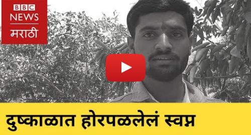 Youtube post by BBC News Marathi: Draught ruined dreams of Marathawda youth | मराठवाड्यातील दुष्काळात होरपळली तरुणांची स्वप्नं