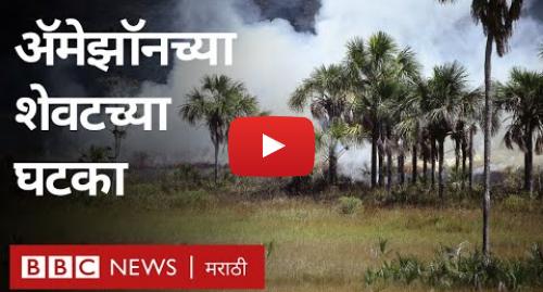 Youtube post by BBC News Marathi: अॅमेझॉनची वृक्षतोड जंगल नष्ट करणार? । Amazon rain forest at the verge of extinction?