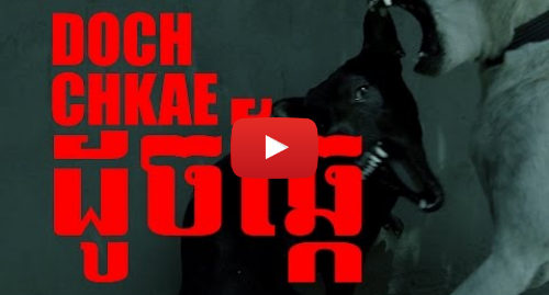 Youtube post by Yab Moung Records: DOCH CHKAE - ខាំគ្នាដូចឆ្កែ (OFFICIAL MUSIC VIDEO)