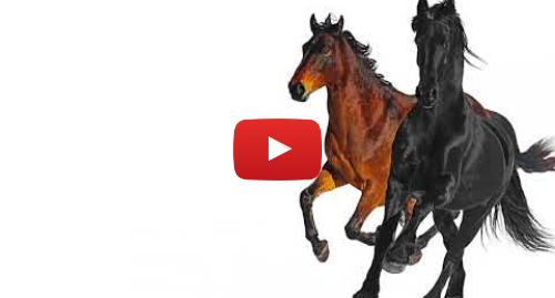 Youtube post by Lil Nas X: Lil Nas X - Old Town Road (feat. Billy Ray Cyrus) [Remix]