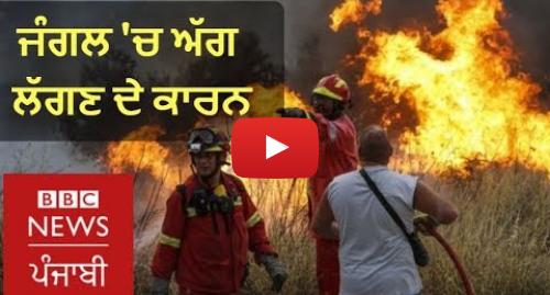 Youtube post by BBC News Punjabi: What makes wildfire spread so quickly? I BBC News Punjabi