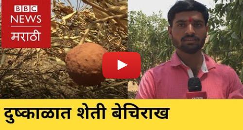 Youtube post by BBC News Marathi: Marathi news  BBC Vishwa 25/04/2019 | Lok Sabha elections | मराठी बातम्या  बीबीसी विश्व