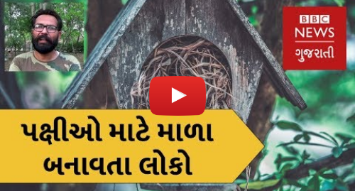 Youtube post by BBC News Gujarati: Meet the team making birdhouses in Punjab (BBC News Gujarati)