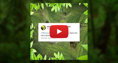 Youtube post by weezer: Weezer - Africa