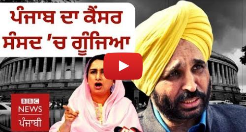 Youtube post by BBC News Punjabi: ਪੰਜਾਬ 'ਚ ਖੇਤੀ ਤੇ ਕੈਂਸਰ ਦਾ ਕੀ ਰਿਸ਼ਤਾ? ਸੰਸਦ ਵਿੱਚ ਗੂੰਜਿਆ ਮੁੱਦਾ I BBC NEWS PUNJABI