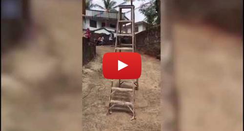 يوتيوب رسالة بعث بها Video Break: Bizarre footage shows ladder 'taking a walk by itself' in India