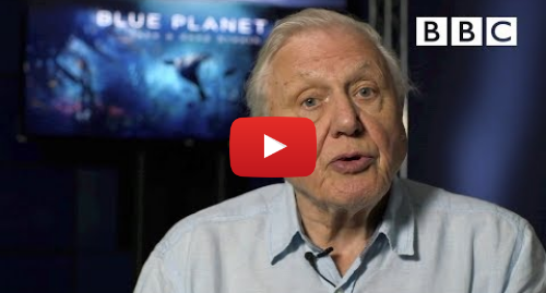 Youtube post by BBC: Sir David Attenborough's plastic message - BBC