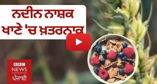 Youtube post by BBC News Punjabi: ਤੁਹਾਡੇ ਖਾਣੇ ਵਿੱਚ ਨਦੀਨ ਨਾਸ਼ਕ ਕਿਵੇਂ ਪਹੁੰਚਦੇ ਹਨ? | BBC NEWS PUNJABI