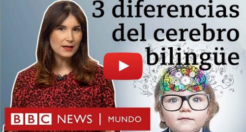 Publicación de Youtube por BBC News Mundo: Cómo cambia tu cerebro al hablar varios idiomas   BBC Mundo