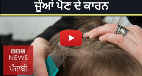Youtube post by BBC News Punjabi: How do lice enter your hair? I BBC News Punjabi
