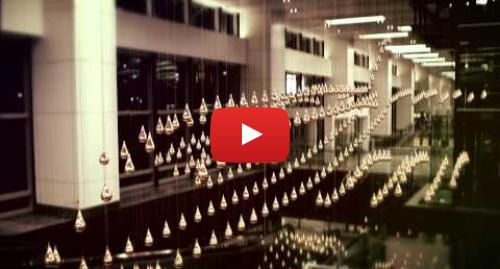 Publicación de Youtube por Changi Airport: Kinetic Rain at Terminal 1 (Official video)