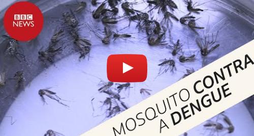 YouTube post de BBC News Brasil: Por que mosquitos estão sendo espalhados por todos os lados em cidade da Colômbia