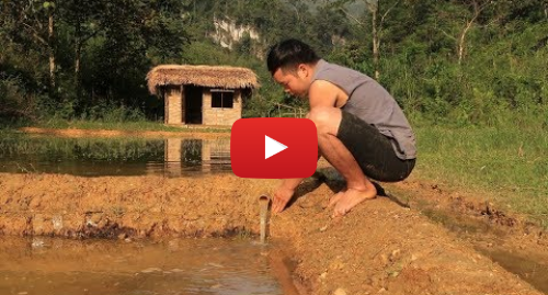 Youtube пост, автор: Primitive Skills: Primitive technology  Farmland, Irrigation (Water supply by bamboo tube for to irrigate rice) Part 2