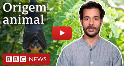 YouTube post de BBC News Brasil: Coronavírus  por que somos cada vez mais atingidos por doenças vindas de animais?