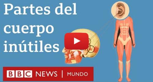 Publicación de Youtube por BBC News Mundo: 6 partes del cuerpo que ya no necesitamos | BBC Mundo