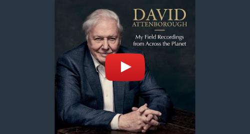 Youtube post by David Attenborough - Topic: Gender Wayang
