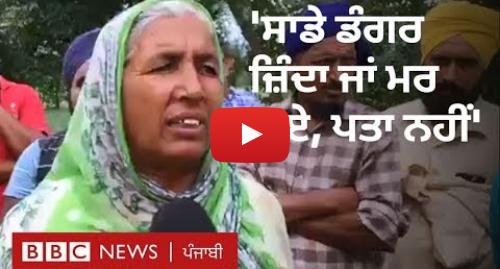 Youtube post by BBC News Punjabi: ਭਾਖੜਾ ਡੈਮ ਤੋਂ ਛੱਡਿਆ ਪਾਣੀ  ਰੋਪੜ ਦੇ ਪਿੰਡ ਲੋਧੀਪੁਰ ਤੋਂ ਬੀਬੀਸੀ ਦੀ ਗ੍ਰਾਊਂਡ ਰਿਪੋਰਟ   BBC NEWS PUNJABI