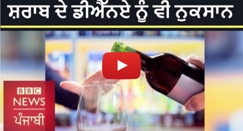 Youtube post by BBC News Punjabi: ਸ਼ਰਾਬ ਦਾ ਸਾਡੇ ਡੀਐੱਨਏ 'ਤੇ ਅਸਰ | BBC NEWS PUNJABI