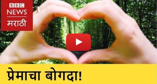 Youtube post by BBC News Marathi: 'Tunnel of Love' in Ukraine। युक्रेनमधला 'प्रेमाचा बोगदा' (BBC News Marathi)