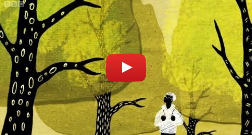 YouTube post de BBC News Brasil: Como árvores conversam entre si por uma rede subterrânea
