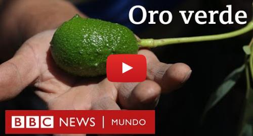 """Publicación de Youtube por BBC News Mundo: ¿Agua o aguacates? El conflicto por la palta, el """"oro verde"""" de Chile"""