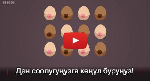 Youtube постту BBC News Кыргыз жазды: Эмчек рагынын 12 симптомун кантип аныктаса болот? - BBC Kyrgyz