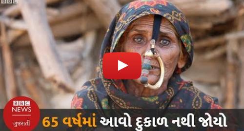 Youtube post by BBC News Gujarati: '65 વર્ષમાં આવો દુકાળ કદી નથી જોયો...' વાત છે સફેદ રણને અડીને આવેલા બન્ની વિસ્તારની