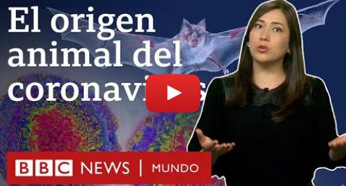 Publicación de Youtube por BBC News Mundo: Coronavirus  por qué contraemos cada vez más enfermedades transmitidas por animales