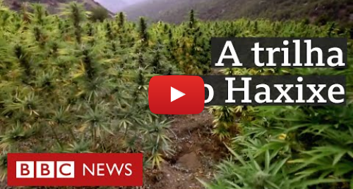 YouTube post de BBC News Brasil: Haxixe no Marrocos  fortuna de traficantes, pobreza de produtores