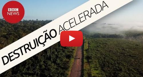 YouTube post de BBC News Brasil: Amazônia perde 'um campo de futebol' de floresta por minuto