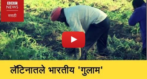 Youtube post by BBC News Marathi: Latina farmer  The modern slaves
