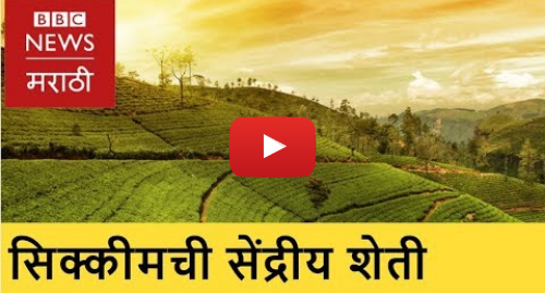 Youtube post by BBC News Marathi: Organic Farming transforms Sikkim । सेंद्रीय शेतीने बदलला सिक्कीमचा चेहरा (BBC News Marathi)