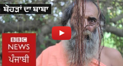 Youtube post by BBC News Punjabi: Huge Banyan Tree of Punjab will stun you