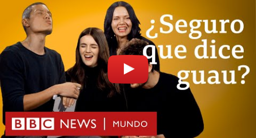 Publicación de Youtube por BBC News Mundo: ¿Por qué los perros no ladran igual en inglés que en español? | BBC Mundo