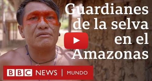 Publicación de Youtube por BBC News Mundo: Guardianes de la selva  el conflicto entre indígenas y madereros en el Amazonas | BBC Mundo