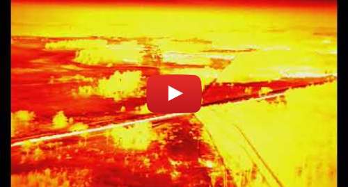 Youtube post by National Fire Chiefs Council: Wareham Forest fire May 2020