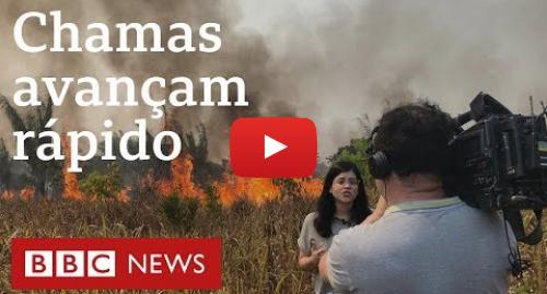 """YouTube post de BBC News Brasil: """"Tivemos que correr do fogo""""  avanço de chamas em Rondônia surpreende equipe da BBC"""