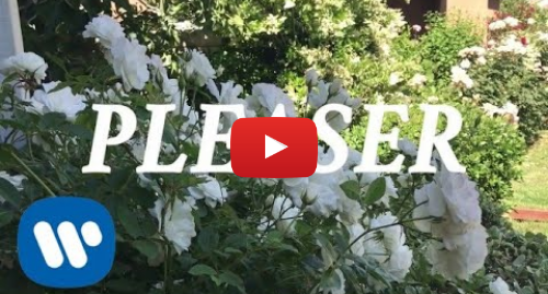 Youtube post by Wallows: Wallows - Pleaser (Lyric Video)
