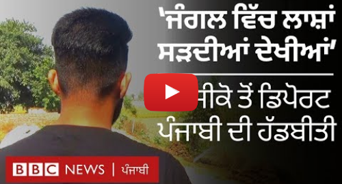 Youtube post by BBC News Punjabi: ਮੈਕਸੀਕੋ ਤੋਂ ਡਿਪੋਰਟ ਹੋਏ ਪੰਜਾਬੀ ਨੌਜਵਾਨ ਨੇ ਕਿਹਾ, 'ਹਰ ਪਾਸੇ ਮਾਫੀਆ ਹੈ' | BBC NEWS PUNJABI