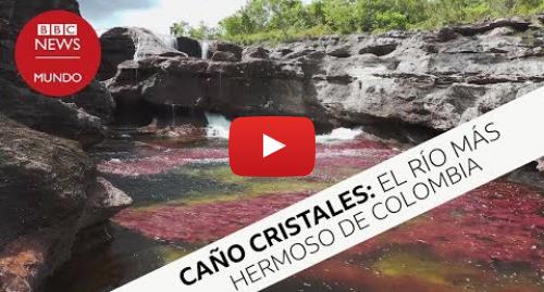 Publicación de Youtube por BBC News Mundo: Caño Cristales, el río más hermoso de toda Colombia