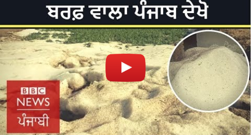 Youtube post by BBC News Punjabi: When hailstones piled up like snow in Punjab's Malerkotla; crops damaged    BBC NEWS PUNJABI