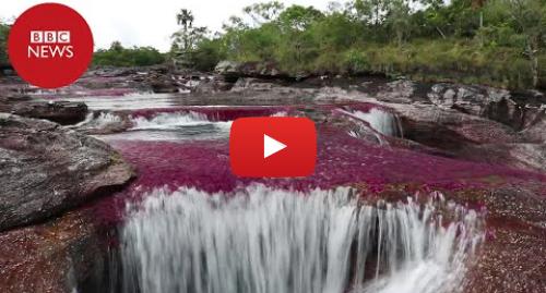 YouTube post de BBC News Brasil: 'Arco-íris líquido'  o remoto rio da Colômbia descrito como a 8ª maravilha do mundo