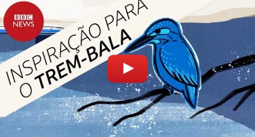 YouTube post de BBC News Brasil: O passarinho que ajudou a transformar o trem-bala do Japão