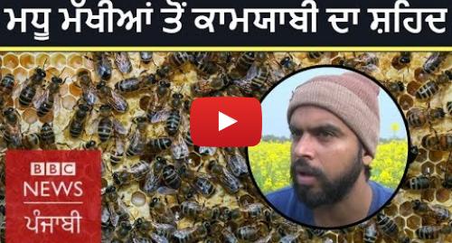 Youtube post by BBC News Punjabi: Punjabi youth who ventured into beekeeping | BBC NEWS PUNJABI